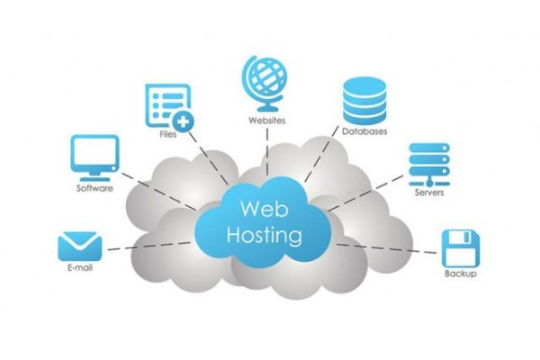 Web Hosting Services (Monthly)